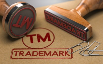 Trademark registration and application process